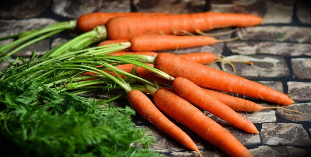 Carrot during pregnancy